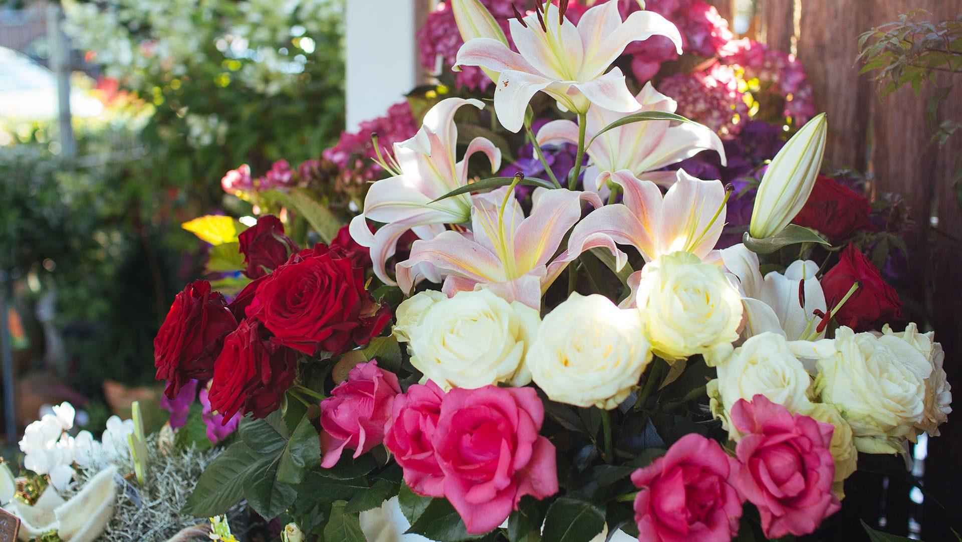 Blumen Biermann